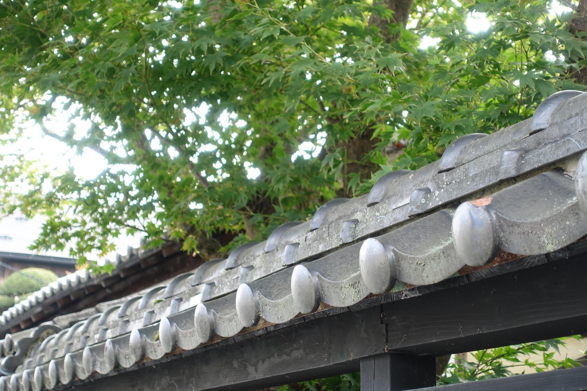 會津酒本田 - 会津地方の日本酒専門店 –